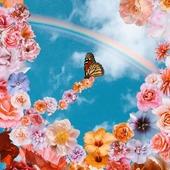 Por fin primavera!! 🌺🏵️🌷🌻🌼 Una de mis estaciones preferidas!! 🥰🌈💚 📸 Artist:@odwyer_sio9* * * * * * #primavera #spring #renacer #mariposas #naturelover #flowerpower #art #españa #madrid #nature #barcelona #love #flores #flowers #naturaleza #picoftheday #instagood #photography #catalunya #travel #photooftheday #happy #beautiful #landscape
